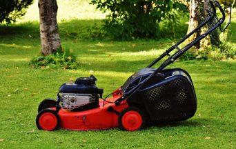 lawn mower 1593898 1920 e1631529713481