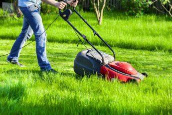 5 Best Electric Lawn Mower Under $300