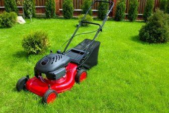 5 Best Gas Lawn Mower