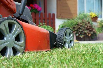5 Best Self Propelled Lawn Mowers