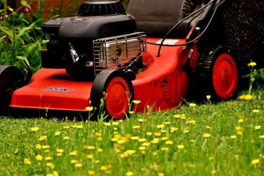 5 Best Month To Buy a Lawnmower