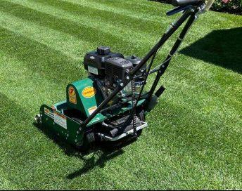 Types of Lawn Mowers - Reel Lawn Mowers