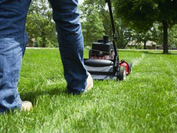 Types of Lawnmowers